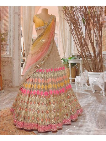 RE - Multi Colored Butterfly Net Mirror Work Lehenga Choli